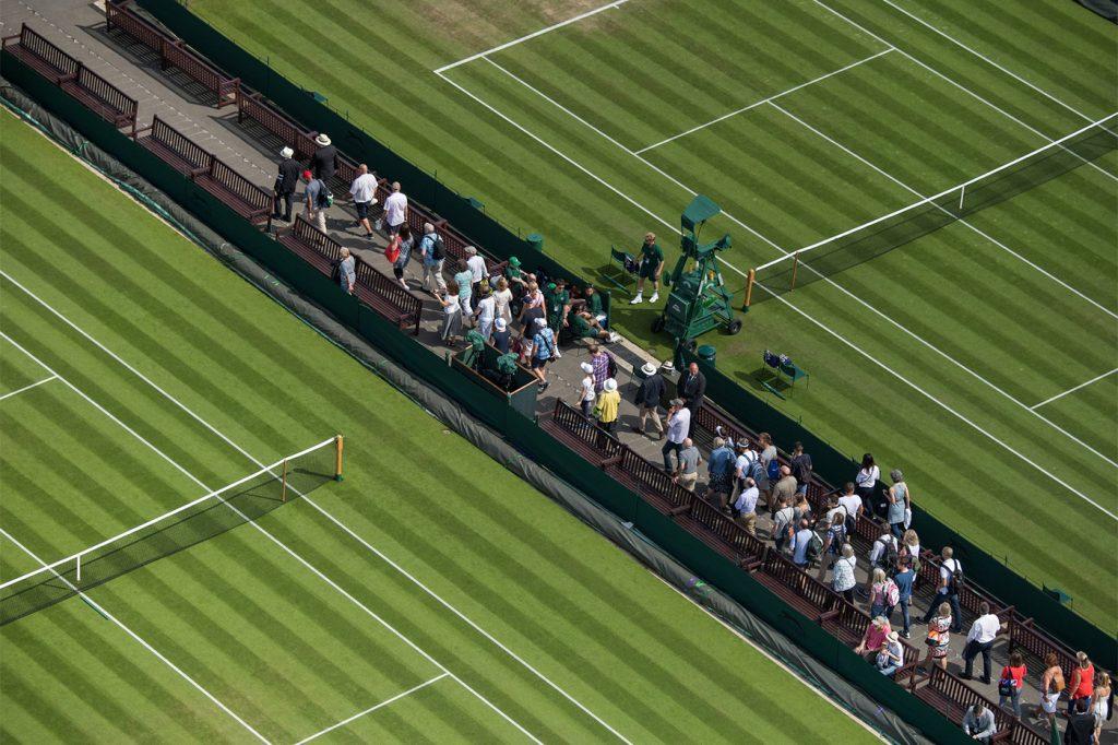 Wimbledon grounds
